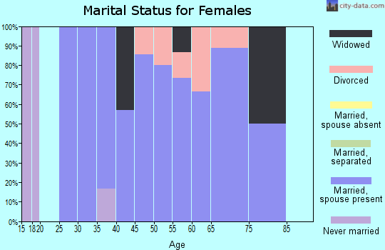 Zip code 56207 marital status for females