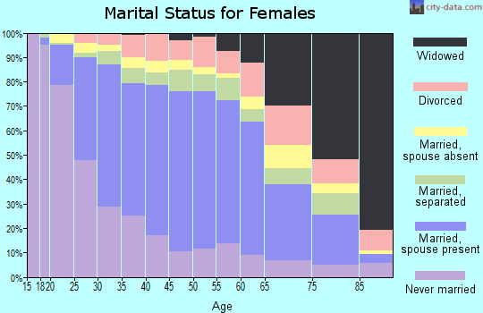 Zip code 60804 marital status for females