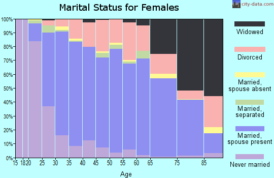 Zip code 63010 marital status for females