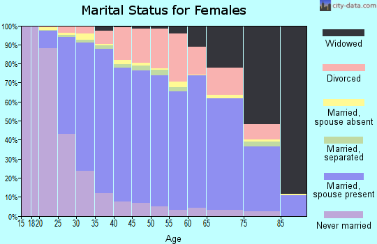 Zip code 63376 marital status for females