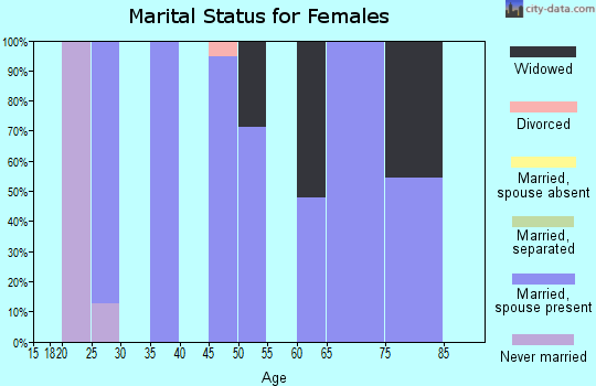 Zip code 63381 marital status for females