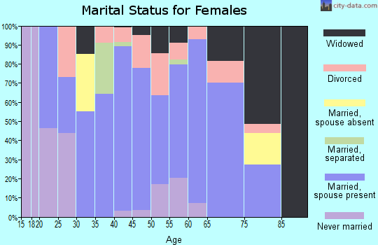 Zip code 63384 marital status for females