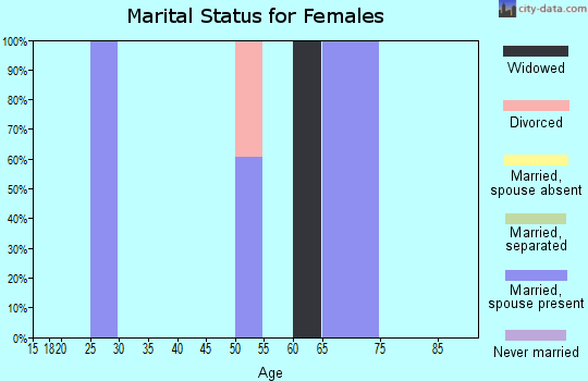 Zip code 63860 marital status for females