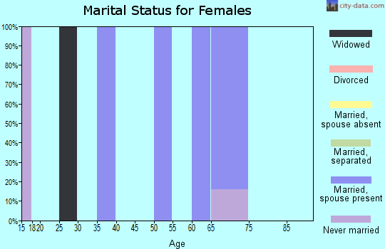 Zip code 71243 marital status for females