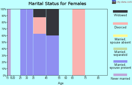 Zip code 73668 marital status for females