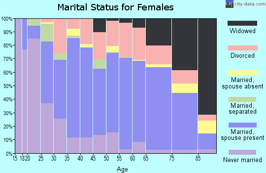 Zip code 78028 marital status for females