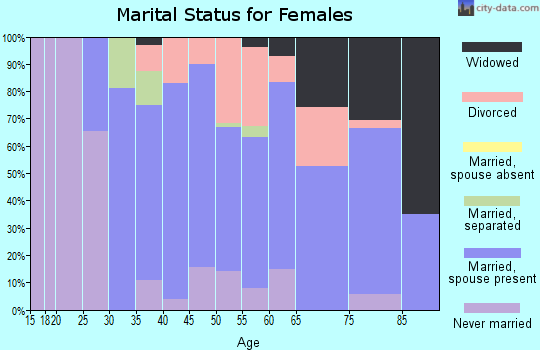 Zip code 78231 marital status for females