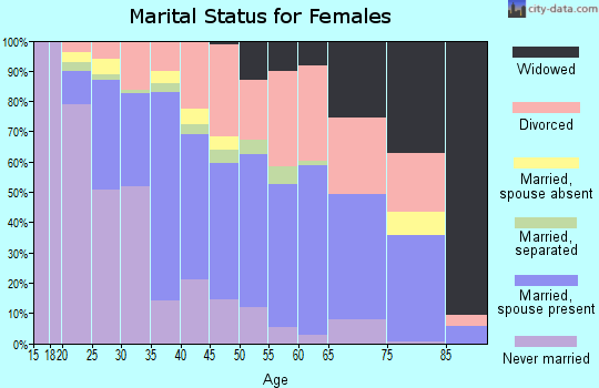 Zip code 78238 marital status for females