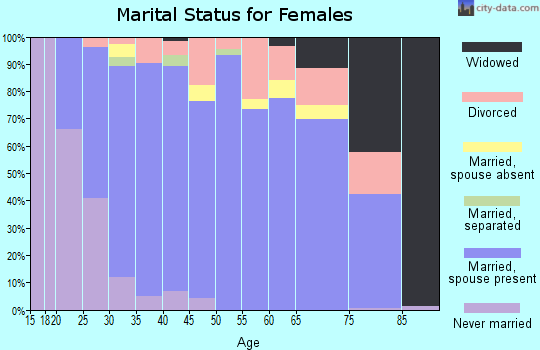 Zip code 78255 marital status for females