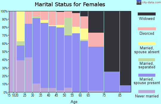 Zip code 78260 marital status for females