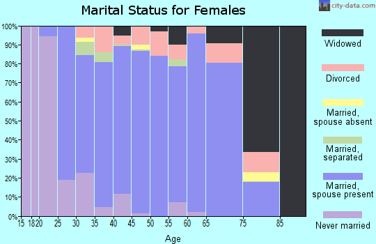 Zip code 78620 marital status for females