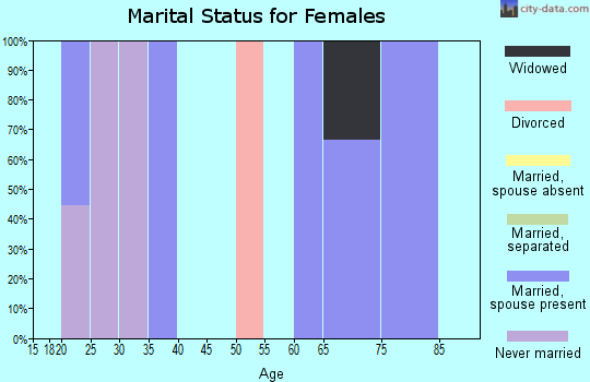 Zip code 78670 marital status for females
