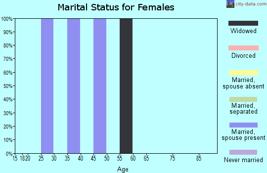 Zip code 80024 marital status for females
