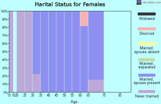 Zip code 80482 marital status for females