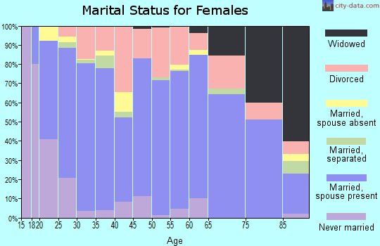 Zip code 84078 marital status for females