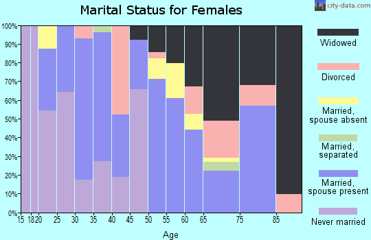 Zip code 85337 marital status for females