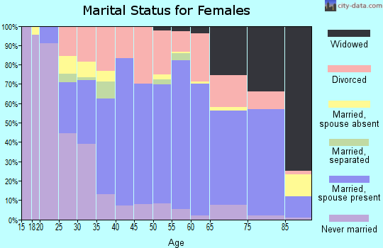 Zip code 85381 marital status for females