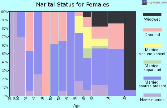 Zip code 85624 marital status for females