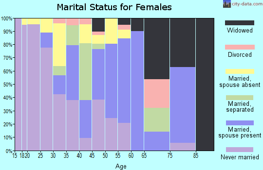 Zip code 86507 marital status for females