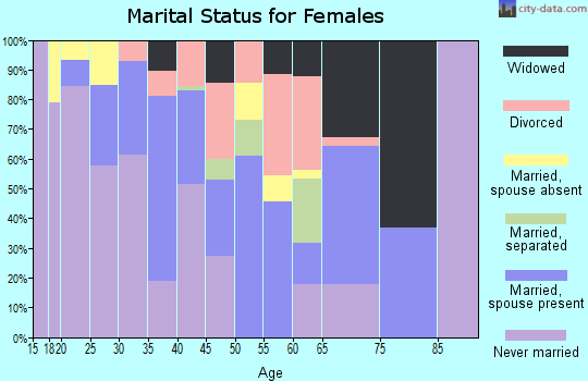 Zip code 86538 marital status for females