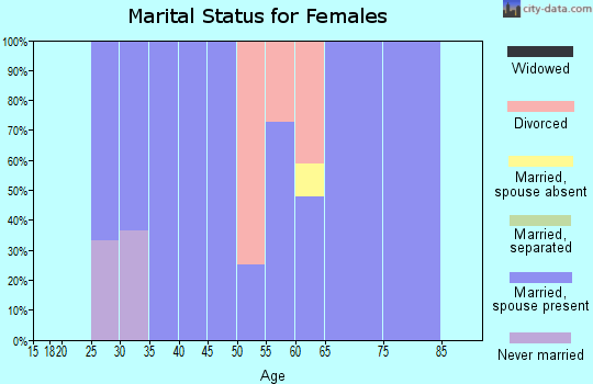 Zip code 94592 marital status for females