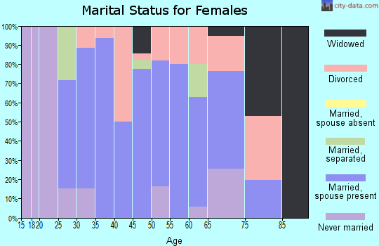 Zip code 95528 marital status for females