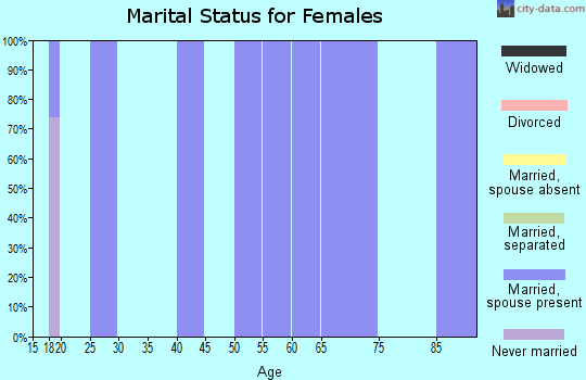 Zip code 96040 marital status for females