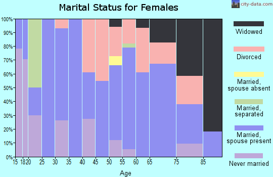 Zip code 96137 marital status for females