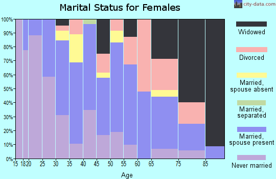 Zip code 96704 marital status for females