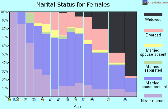 Zip code 96813 marital status for females