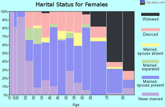 Zip code 99022 marital status for females