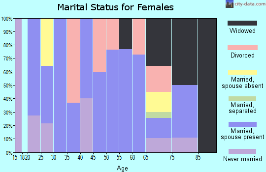 Zip code 99033 marital status for females