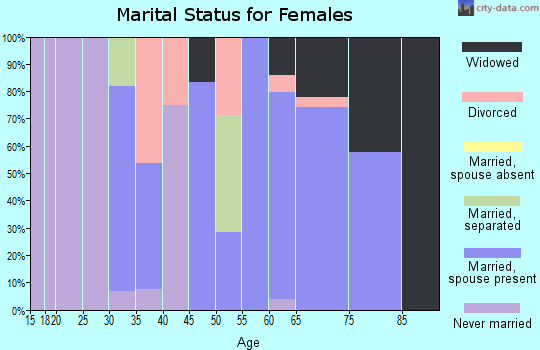Zip code 99123 marital status for females