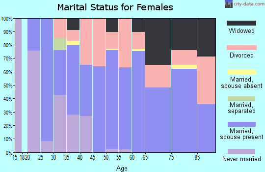 Zip code 99141 marital status for females