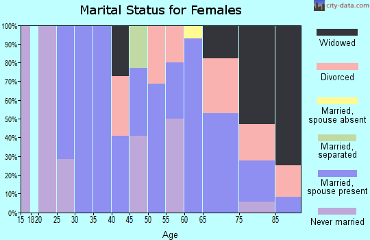 Zip code 99143 marital status for females