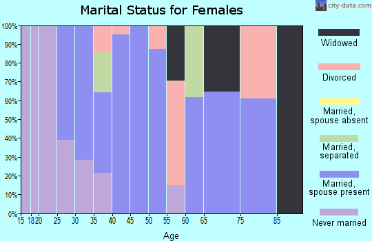 Zip code 99173 marital status for females