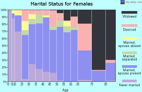 Zip code 99705 marital status for females