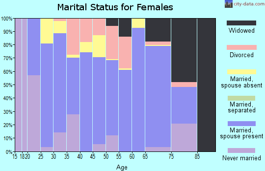 Zip code 99737 marital status for females